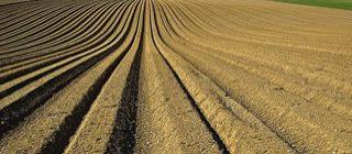 Soil-Day-2016.02